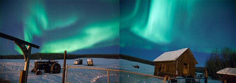 Northern lights dance above a hay field off Farmers Loop Rd., Fairbanks Alaska.