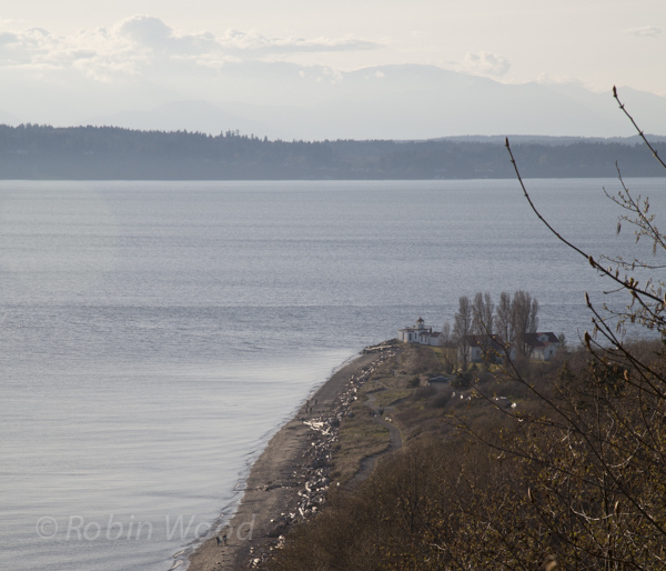 The view from Magnolia Bluff shows pedestrians walking the beach, with the lighthouse barely visible.