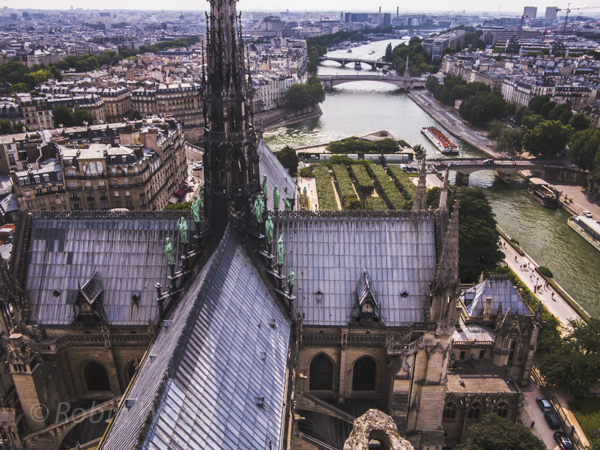 The very top of Notre Dame Cathedral looking west.