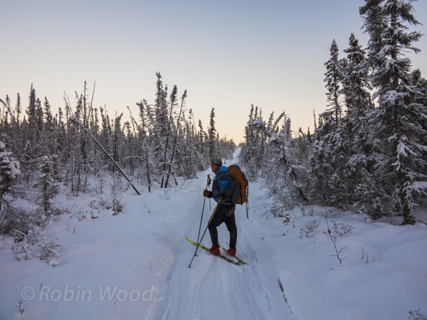 Nick pauses partway into a long uphill on a cold cross-country ski.