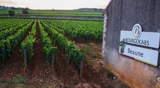 Back in Beaune - time for a well-deserved dinner and some rest.