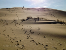 Climbing sand dunes on the Oregon Coast