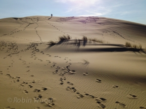 Climbing sand dunes on the Oregon Coast