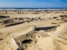 Florence Beach, Oregon coast.