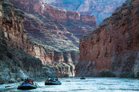 A flotilla of rafts cruises down the Colorado River in the Grand Canyon in early 2017.